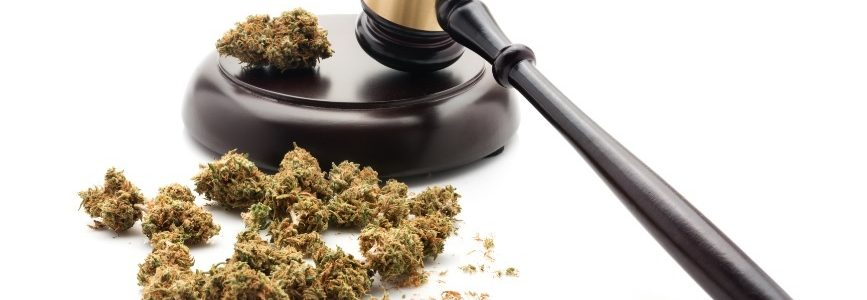 Legalizing and strictly regulating cannabis: the facts